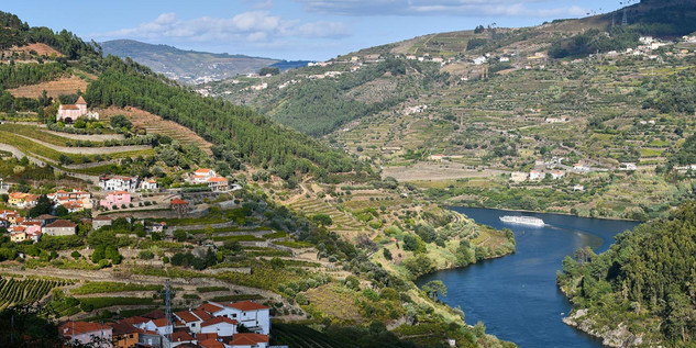 03. Wine terraces at the Douro.jpg