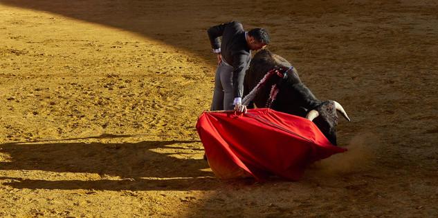 15. El Cid.jpg