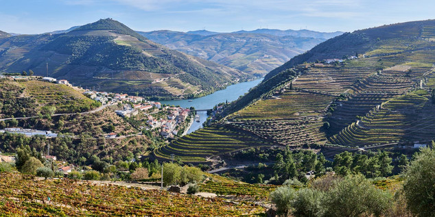 04. Wine terraces at the Douro.jpg