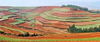 16. Red earth hills terraced farming, Do