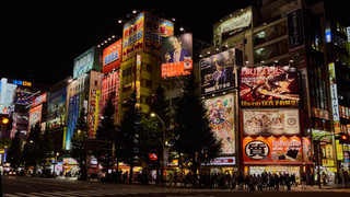 04. Akihabara at night.jpg