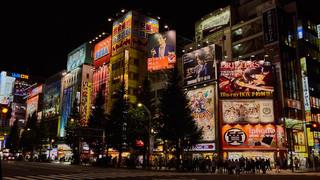 04. Akihabara at night.jpg