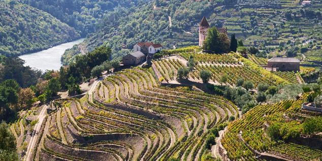 02. Wine terraces of the Douro.jpg