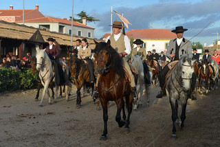 09. Lusitano Horse Festival.jpg