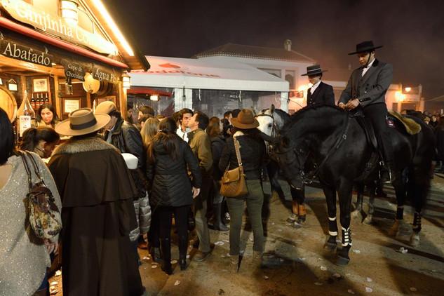 14. Lusitano Horse Festival.jpg