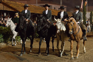 10. Lusitano Horse Festival.jpg