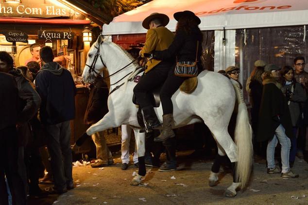 15. Lusitano Horse Festival.jpg