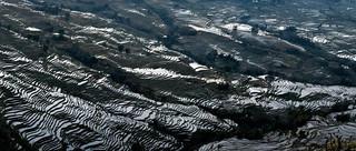09. Rice Terraces of the Hani people, Yua
