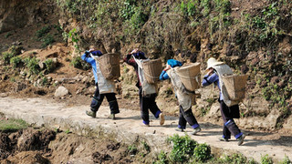 18. Hani women carrying their goods up f