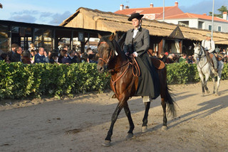 06. Lusitano Horse Festival.jpg