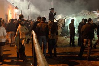 19. Lusitano Horse Festival.jpg
