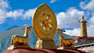 12. The Dharma Wheel of the Jokhang Mona