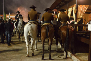 13. Lusitano Horse Festival.jpg