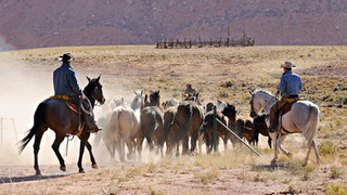 10. Ranchers, Utah.jpg