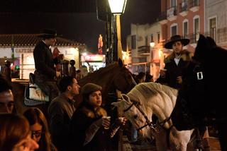 16. Lusitano Horse Festival.jpg