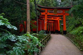 15. Fushimi Inari Taisha.jpg