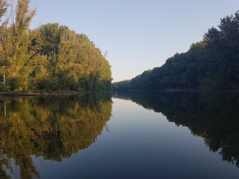 3.A Mosoni-Duna holtágán.jpg