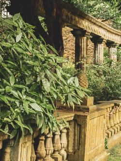 Whitburn Hall Garden 3
