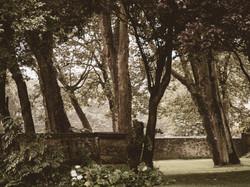 Whitburn Hall Garden 8