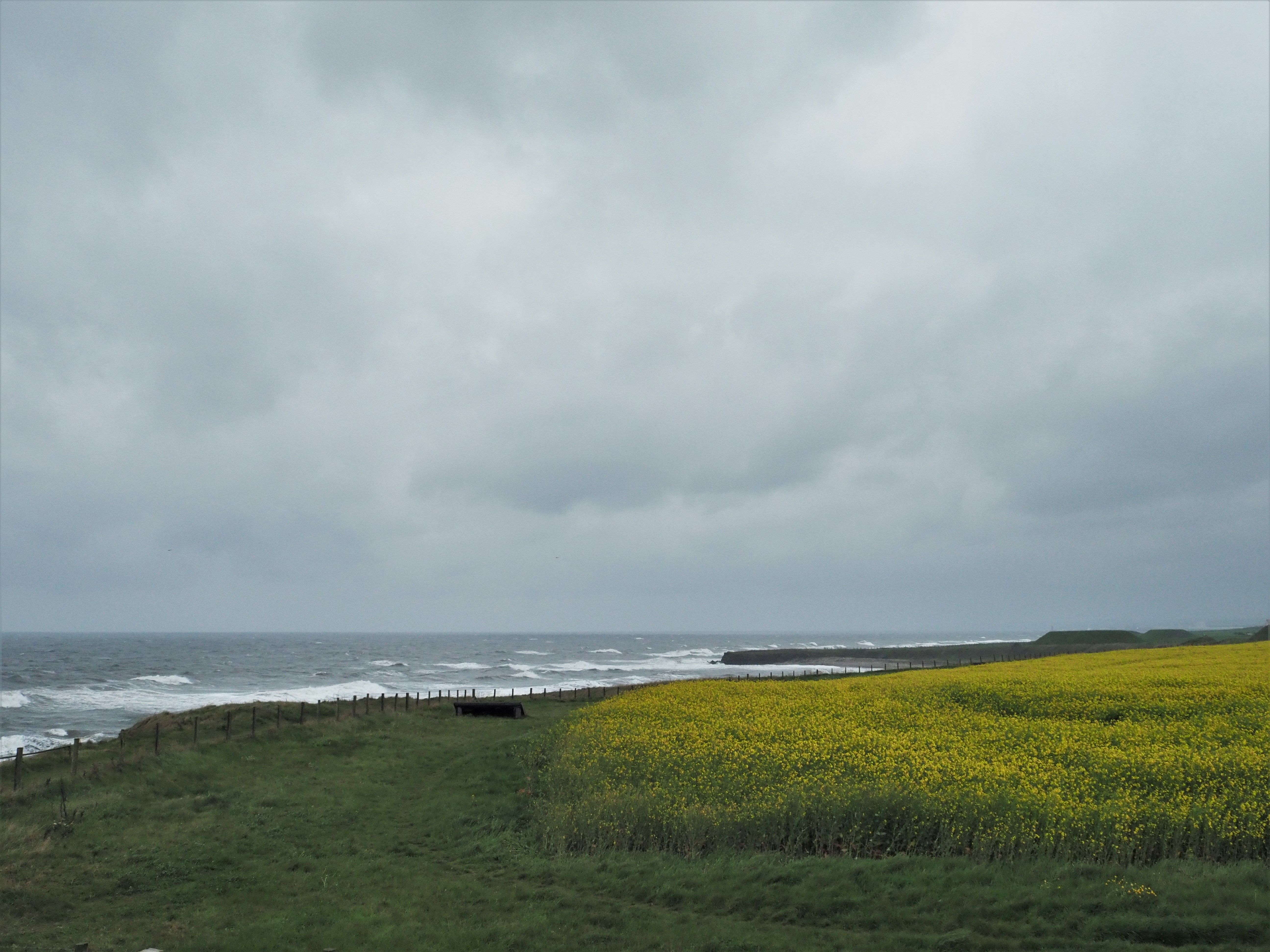 England Coast Path 4