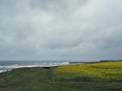 England Coast Path 4