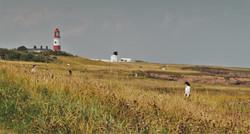 Souter Lighthouse 6