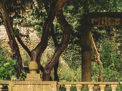 Whitburn Hall Garden 12