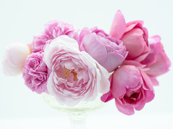 A Bunch Of English Roses 2