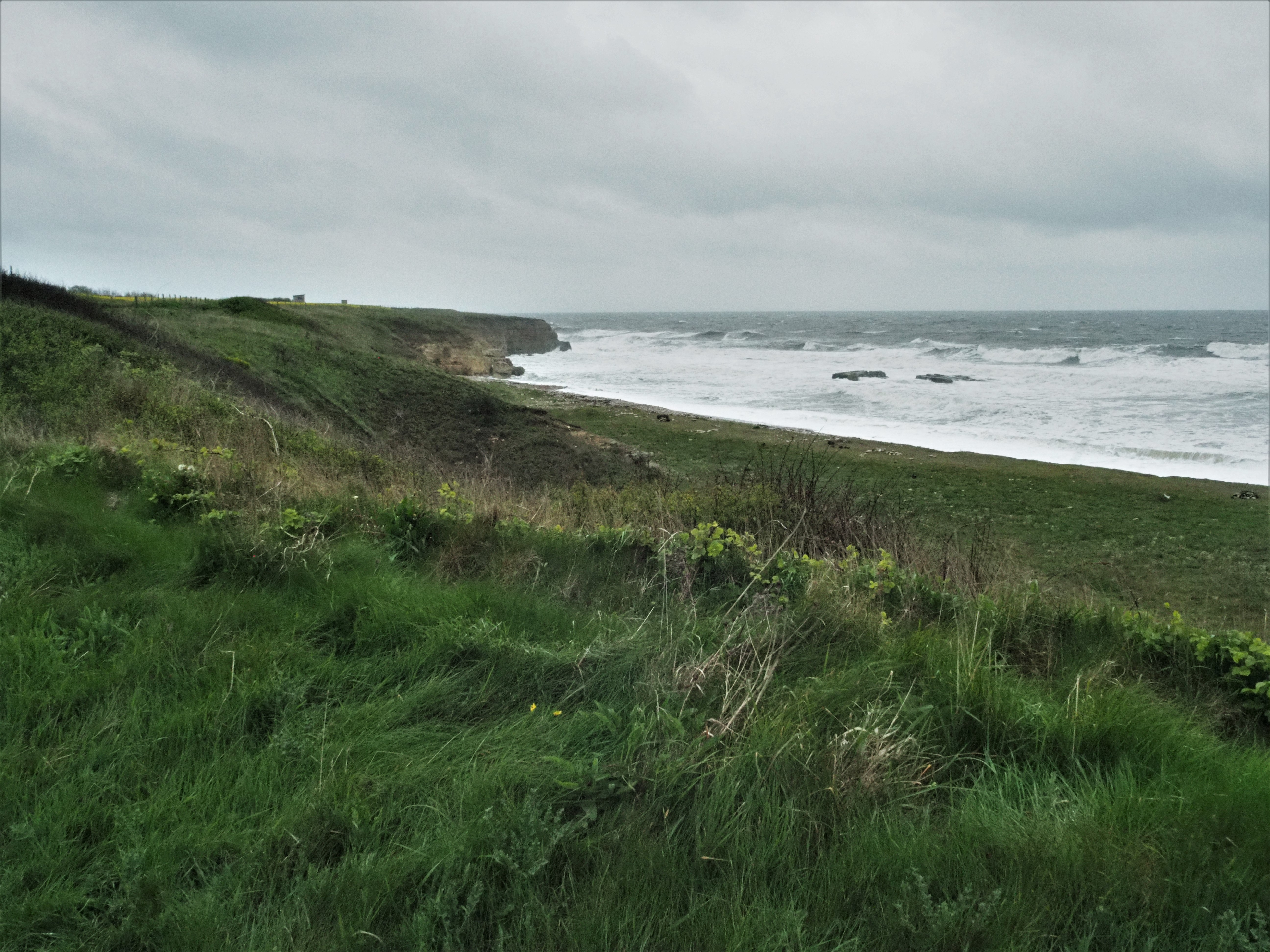 England Coast Path 8