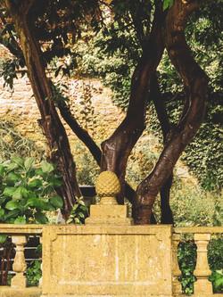 Whitburn Hall Garden 2
