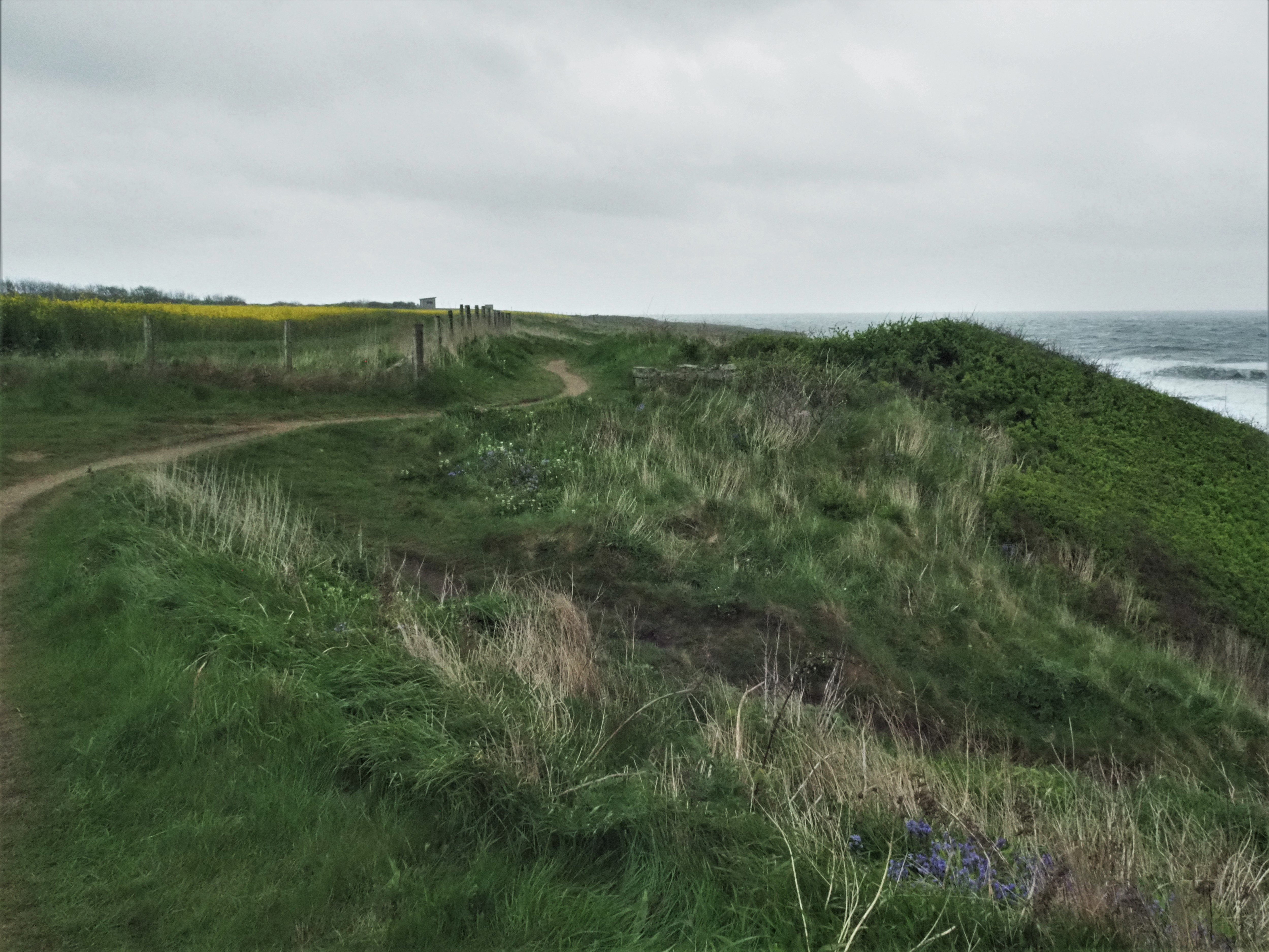 England Coast Path 9