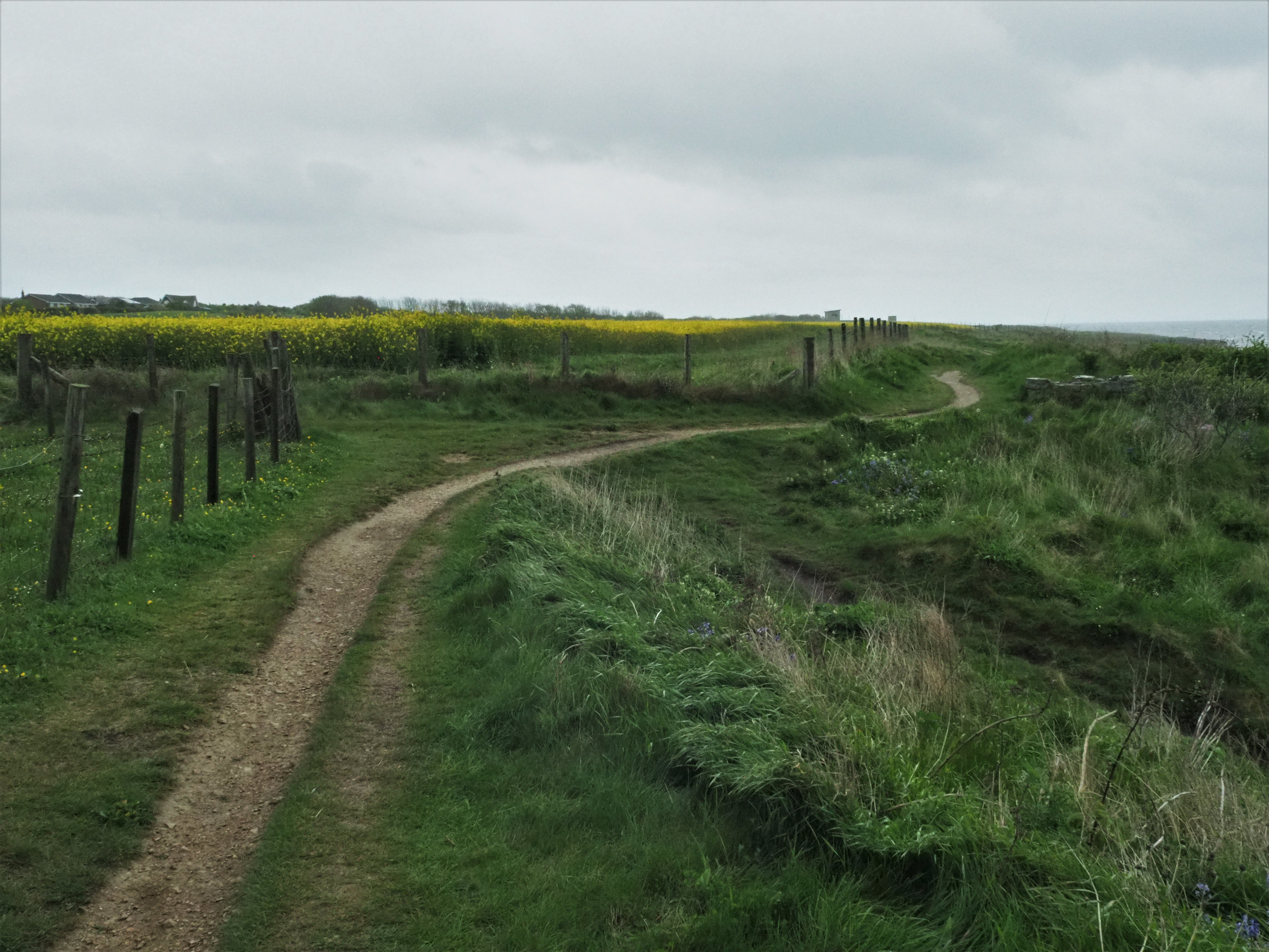 England Coast Path 7
