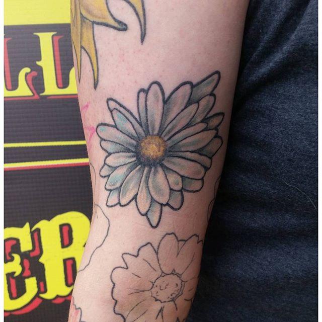 Healed daisy