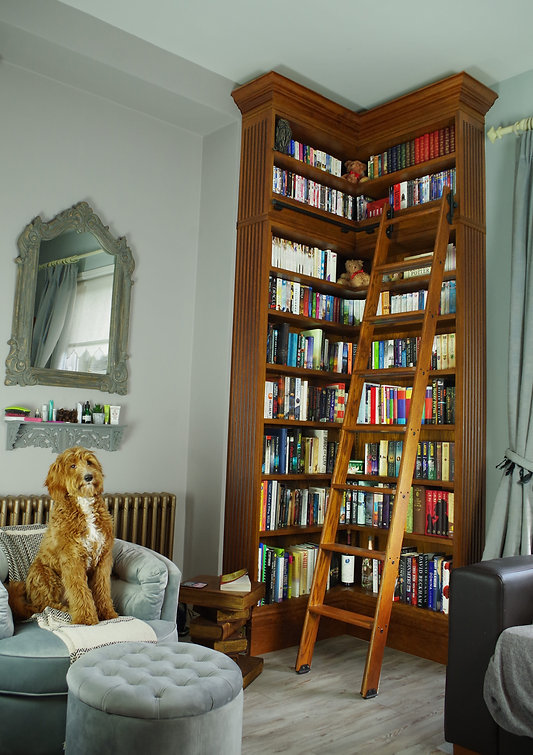 harry-potter-bookcase.jpg