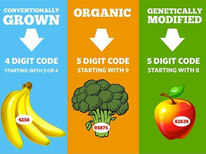 GMO vs. Natural vs. Organic vs. Gluten-Free