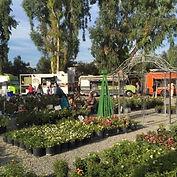 Gazebo Gardens, Food Trucks, Beer Garden, Local Love, Fresno CAlifornia, None Plus 5, Family Fun