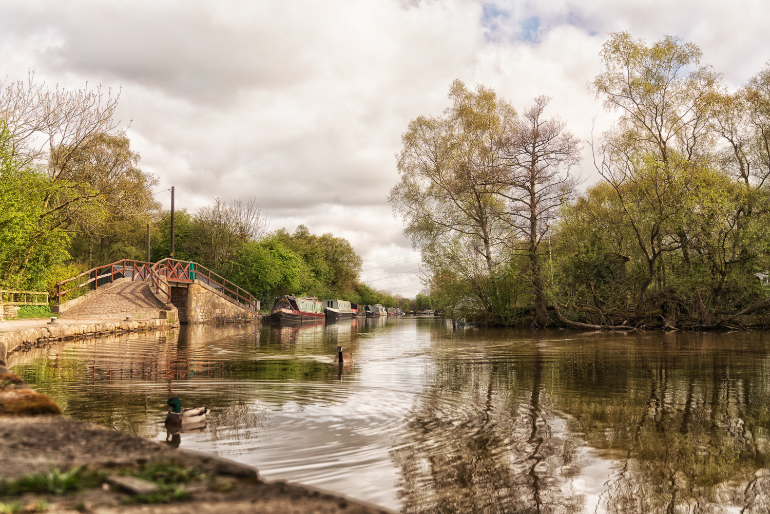 Macclesfield Canal by RJ Photo