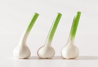 Product - Food - Garlic-1.jpg