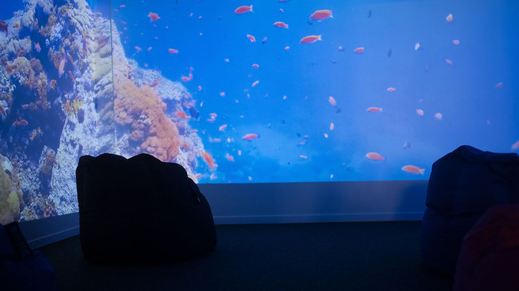 sensory-me-roscommon-immersion-room-wate