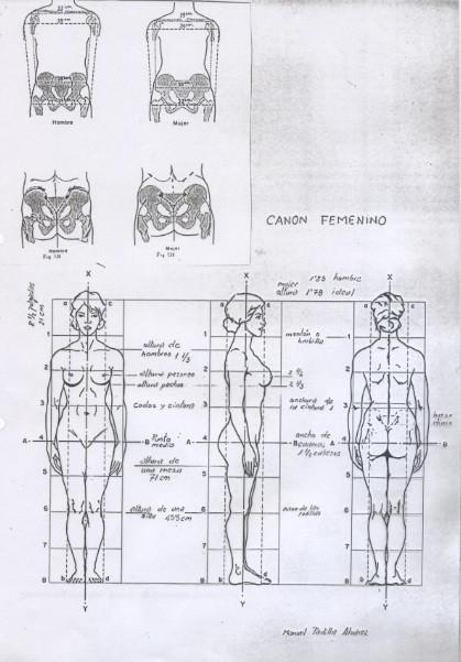 canon-proporcic3b3n-figura-humana-mujer-