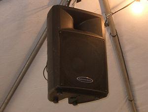 Suspended Speaker.jpg