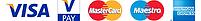 MBPtraining - Fernando Puente - MIHA BODYTEC Type de paiement Visa Mastercard