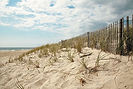 beach dunes hamptons
