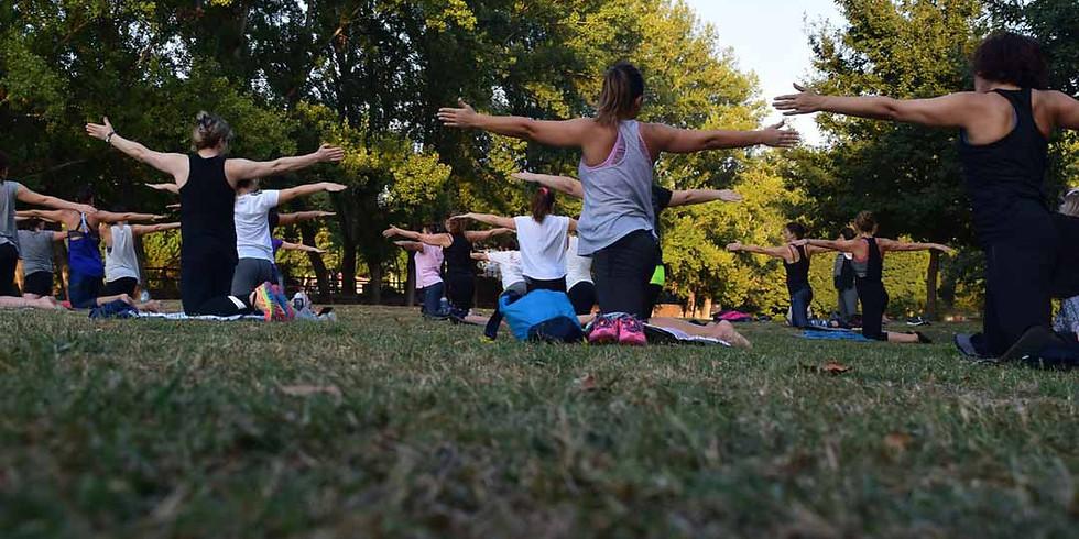 Marche: viaje holístico, Yoga experience