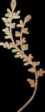 Golden-Floral-Elements-01.png