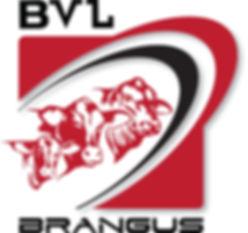 BVL Logo (002).jpg