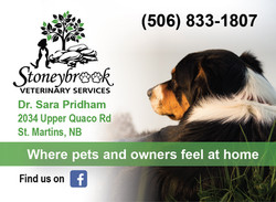Stoneybrook Veterinary Services
