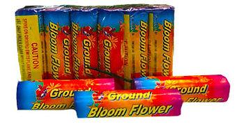 ground bloom.jpg