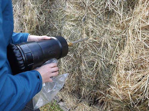 Hay Analysis for Horses