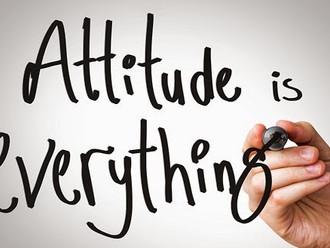 "Equine Nutrition: Testing Your ""Attitude"""